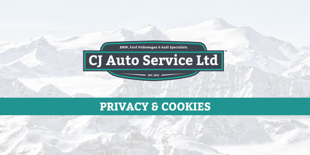 Cookie Policy - Privacy Policy